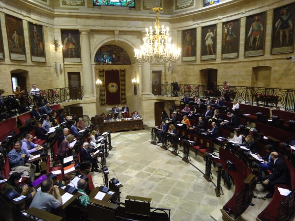 Primer pleno ordinario de la legislatura